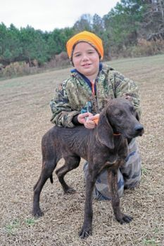 Plott hounds, brought to North Carolina from Germany in the mid-1700s, are a mainstay for bear hunters old ­and young.