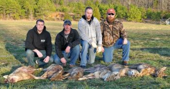 Chad Gilreath, William Reece, A.J. Snyder, and Wesley Jordan make up Team Snyder, who won the Carolina Coyote Classic with six coyotes.